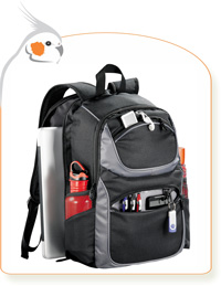Friendly Compu-Backpack