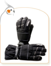 Alpine Winter Glove